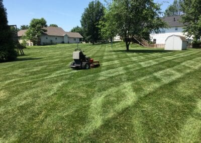 worker working on the lawn