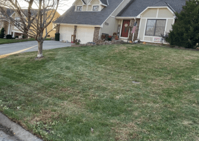 cleaned lawn